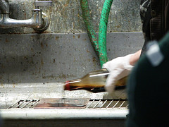 zeamays_degreasing_plate_with_soy_sauce